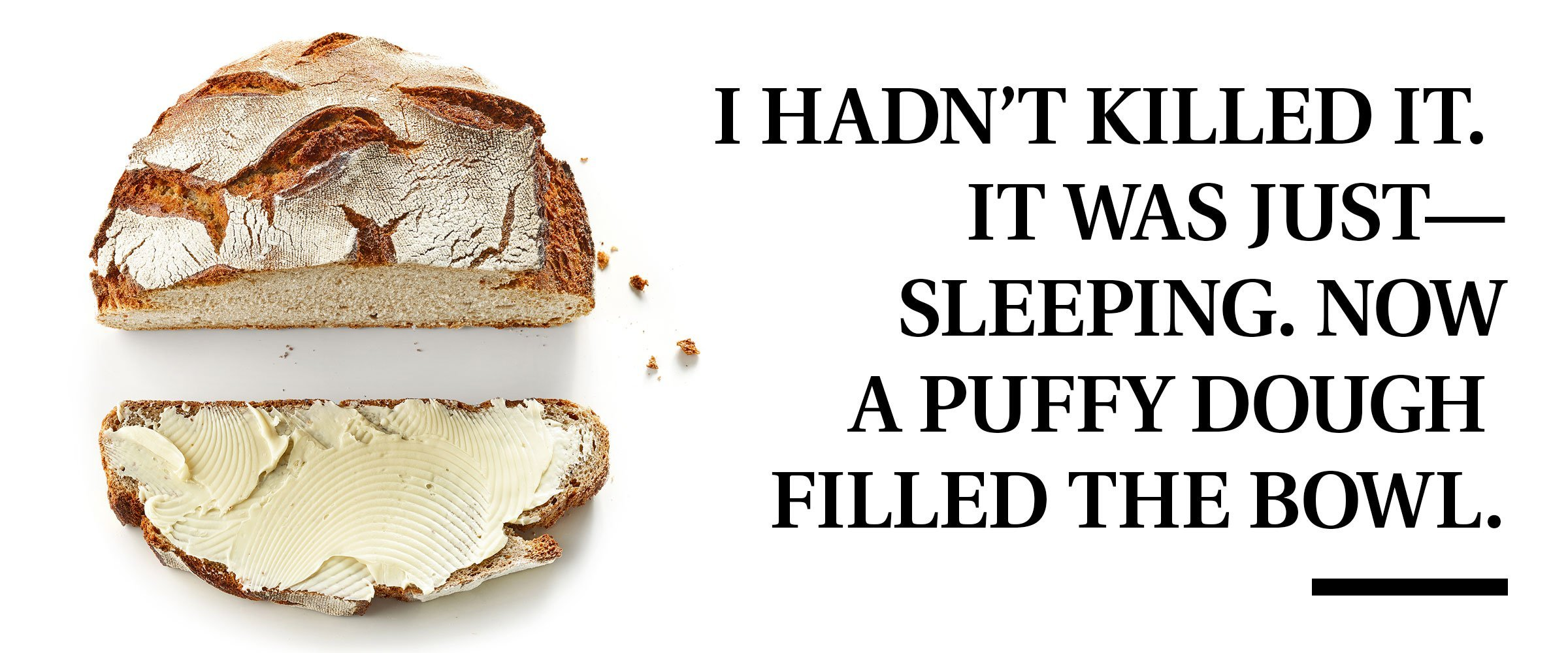 "bread with pull quote text: ""I hadn't killed it. It was just-sleeping. Now a puffy dough filled the bowl."""