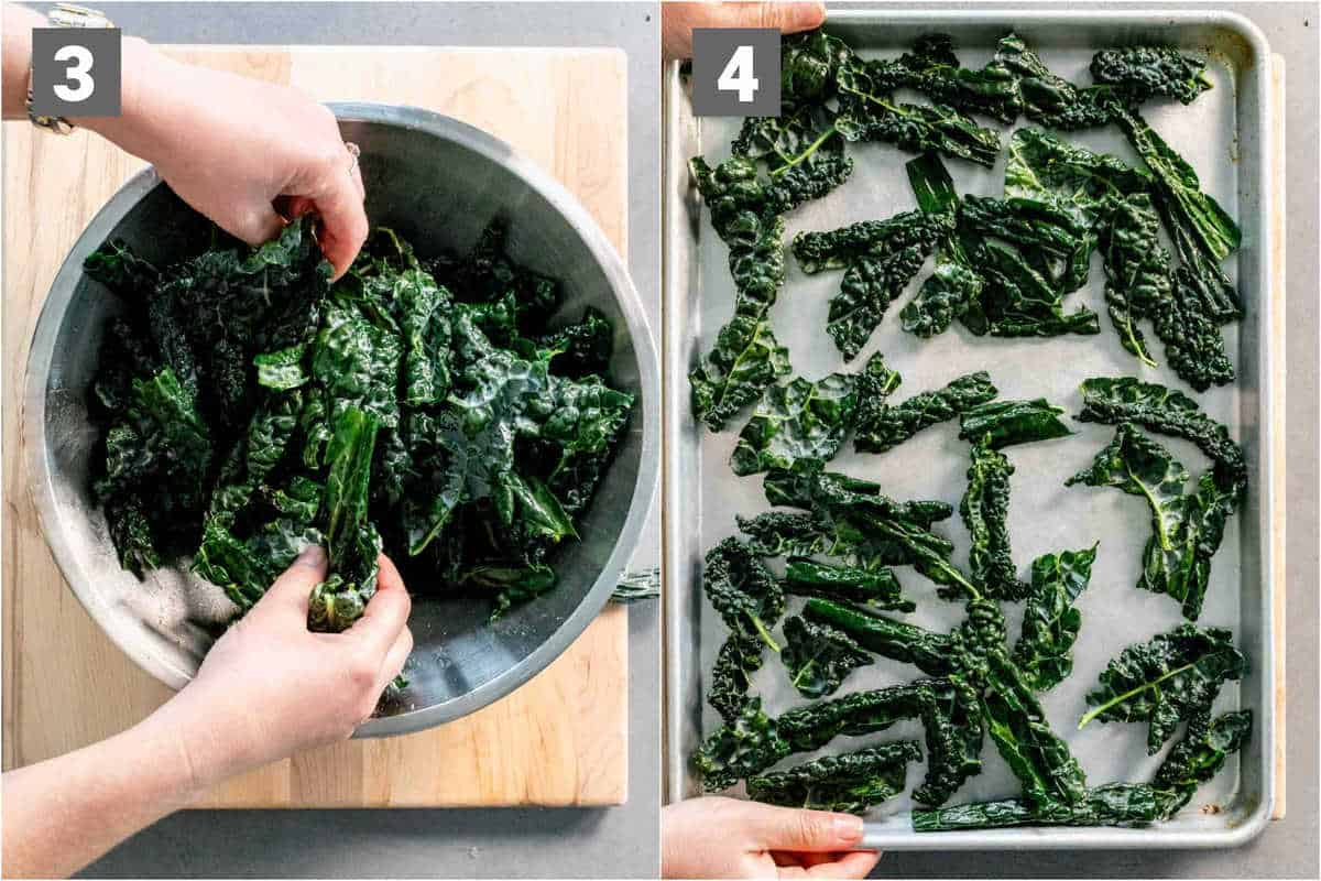 preparing the kale for making chips